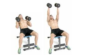 neutral grip dumbbell bench press home decorating interior
