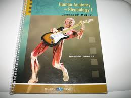 human anatomy and physiology 1 laboratory manual custom edition