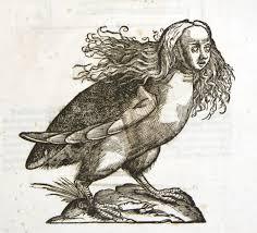 harpies the monsters of greek mythology stillunfold