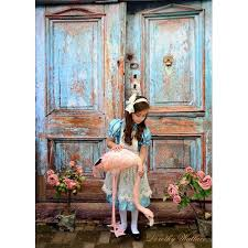 34 best vintage door backdrops images on vintage doors