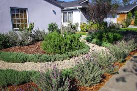 Landscaping Wood Chips by Wood Chips As Ground Cover With Drought Tolerant Plants Google