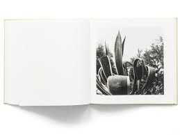 nature of los angeles 2008 u20132013 signed by bruce davidson