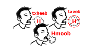 how to pronounce the u0027h u0027 in hmong travis gore illustration and