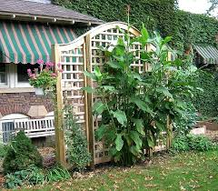 wedding arches home depot arched trellis arched trellises carlislerccar club