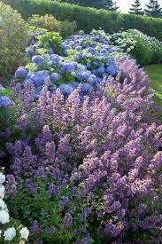 1785 best garden u0026 exterior images on pinterest
