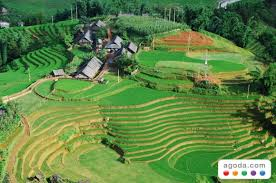 agoda vietnam agoda com helps travelers acclimatize with deals in asia s cool
