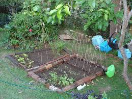 vegetable garden trellis plans home outdoor decoration