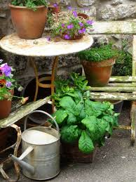 ten water saving tips for your garden the micro gardener