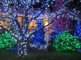 Solar Powered Tree Lights - solar powered outdoor string lights for the christmas holidays