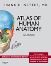 Fundamentals Of Anatomy And Physiology 6th Edition Human Anatomy 6th Edition Periodic Tables