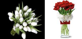 wedding flowers tulips merry brides top 10 wedding flowers pro s and cons