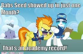 Brony Memes - my little pony memes cheezburger image memes at relatably com