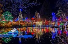 contemporary decoration lights park garland pond