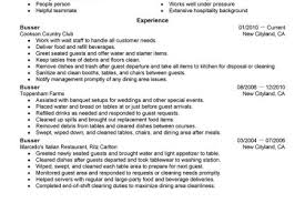 Busboy Resume Examples by Busboy Resume Sample Best Lane Server Resume Example Livecareer