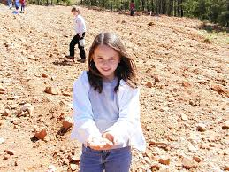 dig your own outdoor adventure rock collecting mining tours
