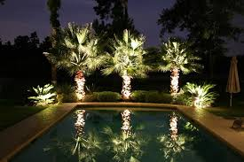 Landscape Lighting Trees Outdoors Landscaping Lighting On Poolside Palm Trees 10