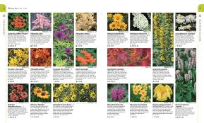 rhs what plant where encyclopedia amazon co uk dk 9781409382973