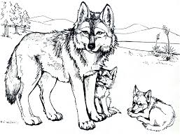 baby wolf coloring pages to print kids coloring