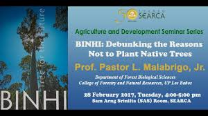 plant native binhi debunking the reasons not to plant native trees youtube