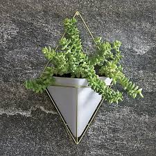 Wall Hanging Planters by 174 Best Green Envy Indoor Outdoor Houseplants Images On