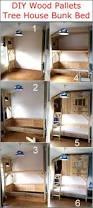 best 25 tree house bunk bed ideas on pinterest indoor tree