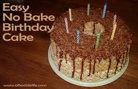 crazy easy bake birthday cake flexible