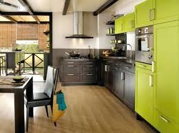 meuble cuisine vert anis mod le cuisine vert anis et marron verte newsindo co