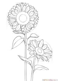 how to draw a sunflower step by step drawing tutorials for kids