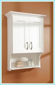 Bathroom Cabinets Designs by Best 25 Over The Toilet Cabinet Ideas Only On Pinterest Benevola