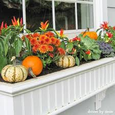 best 25 window boxes ideas on pinterest plants for window boxes