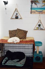 Dog Home Decor by Pet Home Decor Hacks That Dog U0026 Cat Owners Will Love