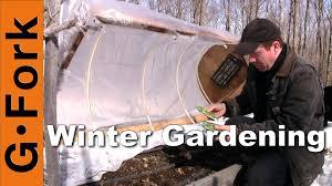 mini greenhouse in winter gardenfork youtube