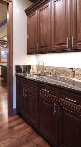Kitchen Cabinet Construction by 243 Best Kitchen Images On Pinterest Kitchen Ideas Kitchen And