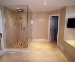 MASTER ENSUITE BATHROOM DESIGN GLASS SHOWER  WATER CLOSET - Toronto bathroom design