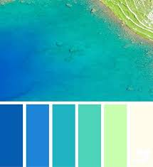 coral color teal and coral color scheme npedia info