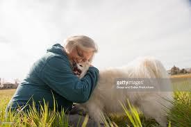 american eskimo dog ireland senior woman hugging american eskimo dog outdoors stock photo