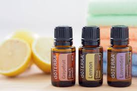 Doterra February 2017 Product Of The Month How To Buy Doterra Essential Oils The Organised Housewife