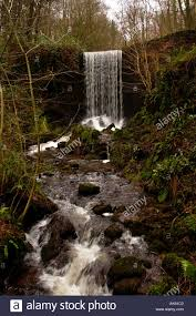 waterfall in woodland at the national botanic garden of wales