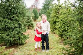 mr tree farm mini shoots karime photography natural light