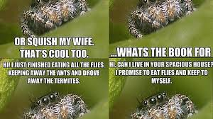 Spider Meme Misunderstood Spider Meme - any value in these vintage misunderstood spider memes i found