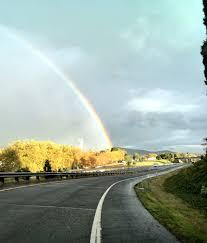 rainbows hashtag on twitter