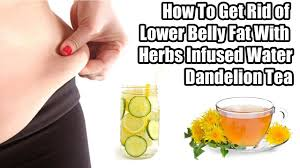 how to get rid of lower belly fat with herbs infused water youtube