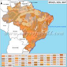 soil map brazil soil map