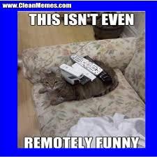 Star Wars Cat Meme - cat memes clean memes the best the most online page 39