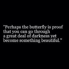 best 25 butterfly quotes ideas on pinterest my happiness quotes