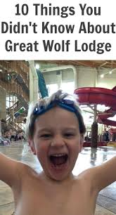 10 things you didn u0027t know about great wolf lodge tots family