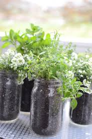 Window Sill Herb Garden by 10 Minute Mason Jar Herb Garden Stonegable