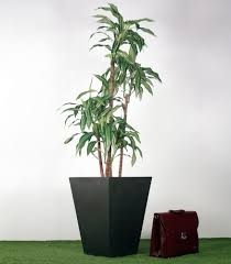 artificial song of india dracaena reflexa tree in vase