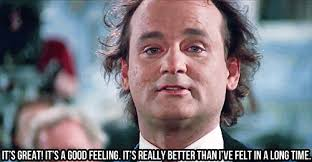 Murray Meme - bill murray christmas meme festival collections