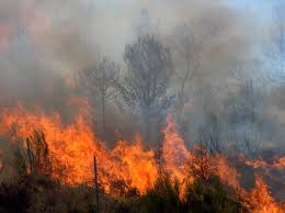California Wildfires Global Warming by Climate Change Wildfires How Global Warming Affects Wildfires